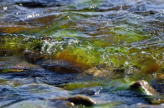 Green wave 2 by Renee Pettersson