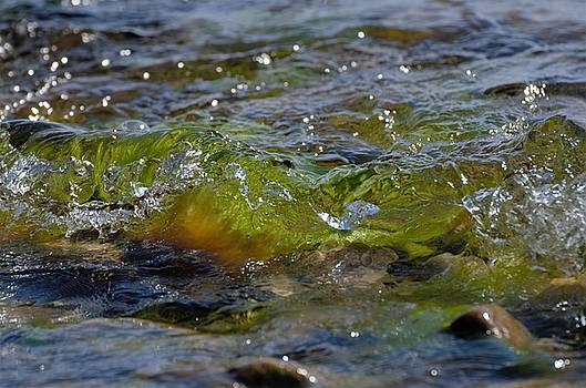 Green wave by Renee Pettersson