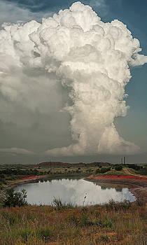 Greenbelt Storm by Scott Cordell