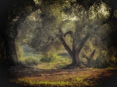 Greener Joy by Robin Zygelman