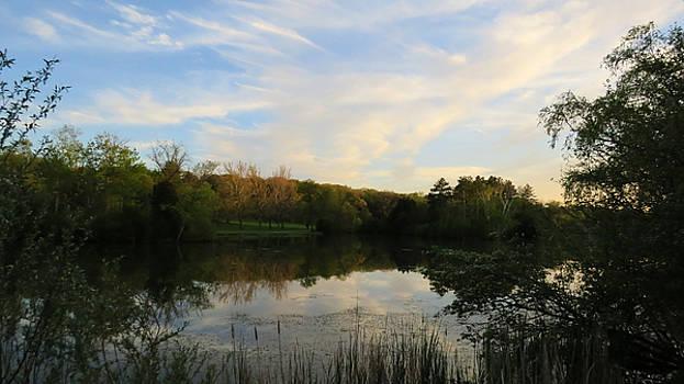 Greenfield Pond by Kimberly Mackowski