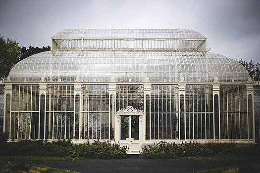 Greenhouse by Amanda Adkisson