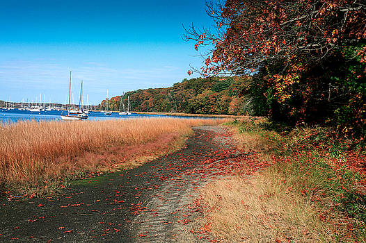 Greenwich Cove by Lon Casler Bixby