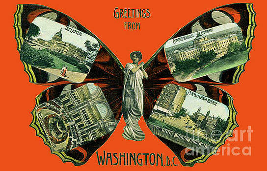 Jost Houk - Greetings from Washington DC