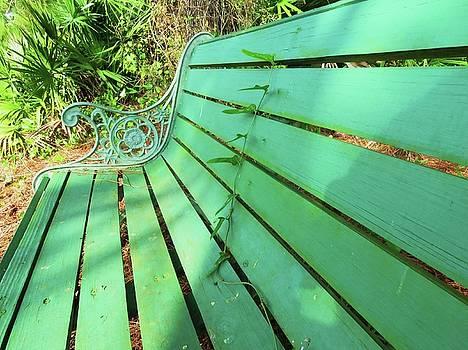 Ivy Green by G Teysen