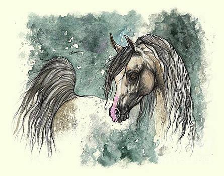 Angel Tarantella - Grey arabian horse 2013 11 18a