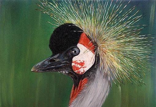 Grey Crowned Crane - oil on canvas by Svetlana Ledneva-Schukina