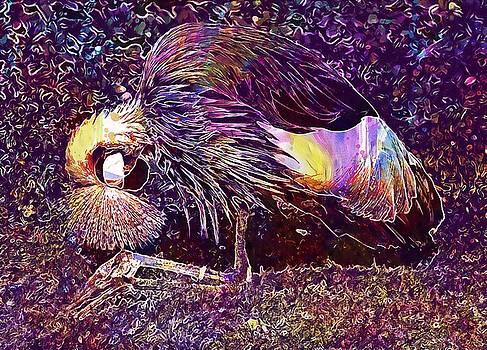 Grey Crowned Crane Crane Bird  by PixBreak Art