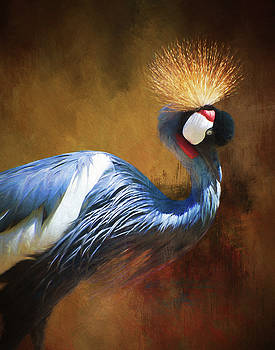 Grey Crowned Crane by Gloria Anderson