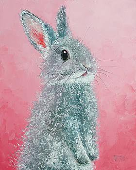 Jan Matson - Grey Easter Bunny