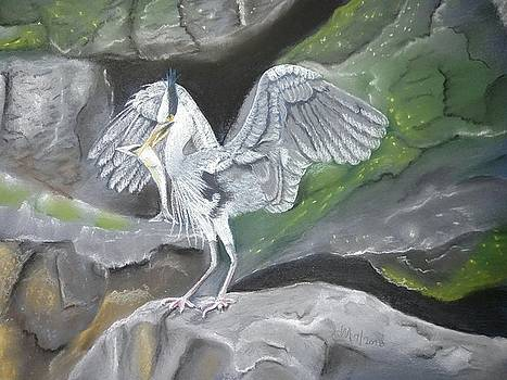 Grey Heron with fish by Joan Mansson