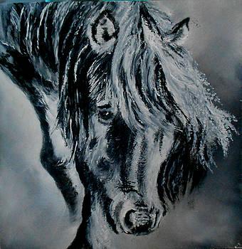 Grey Horse by Maris Sherwood