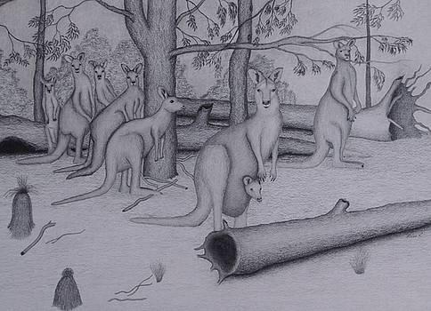 Grey Kangaroos by Brian Leverton