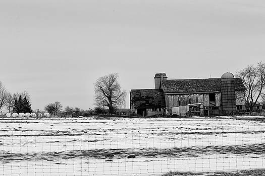 Grey on Grey on White by CJ Schmit