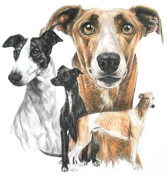 Barbara Keith - Greyhound Collage
