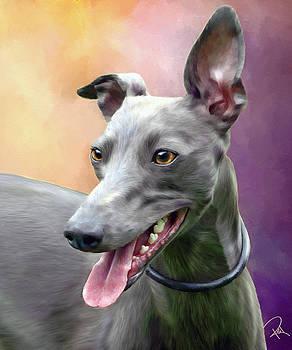 Greyhound by Rebecca Tabor