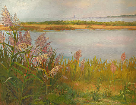 Griswold Point  by Karen Lipeika