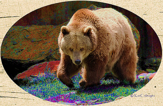 Kae Cheatham - Grizzly Bear with Enhanced Background