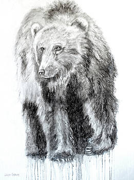 Grizzly by Jennifer Godshalk