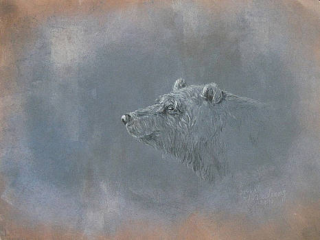 Grizzly by Sarah Mushong