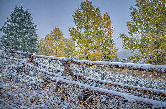 Gros Ventre Grand Teton Fall Snowfall Fence by Scott McGuire