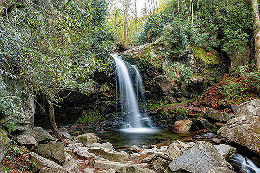 Grotto Falls by Cathie Crow