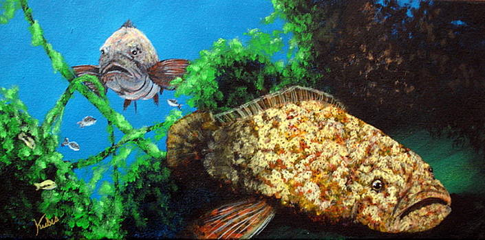 Grouper in Wreck by Susan Kubes