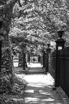 Karol Livote - Grove Street