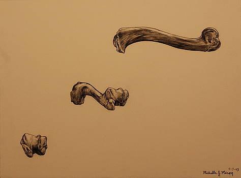 Growing Bone by Michelle Miron-Rebbe