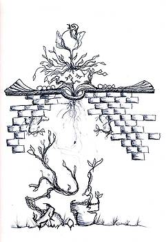 Growing Nowhere by Doug Johnson