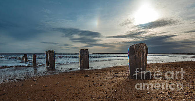 Marc Daly - Groynes at sunset