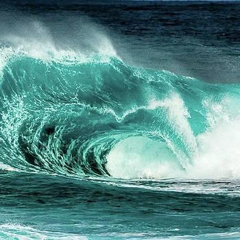Grrrrr! #wave #slab #growlers #surf by Mik Rowlands