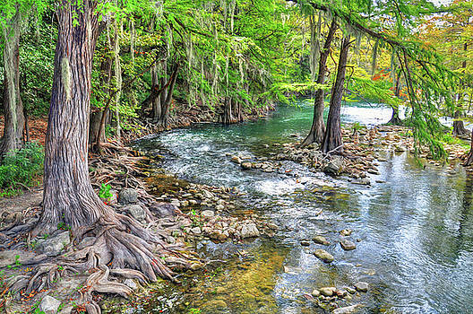 Gruene Texas Guagalupe River Bank by Savannah Gibbs