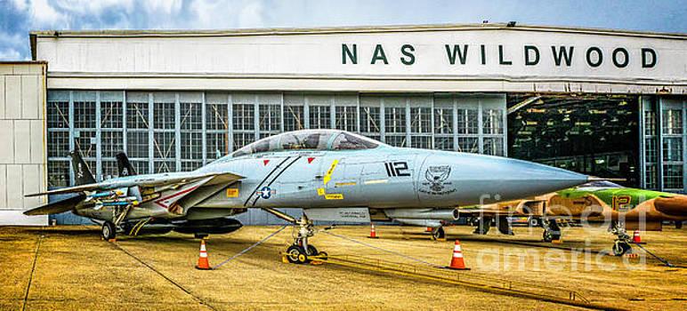 Grumman F-14 Tomcat  by Nick Zelinsky