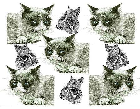 Jack Pumphrey - Cat Scratch Fever Shower Curtain