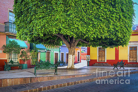 Guanajuato Small Park by Inge Johnsson