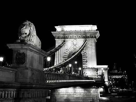 Guarding the Chain Bridge by Rae Tucker