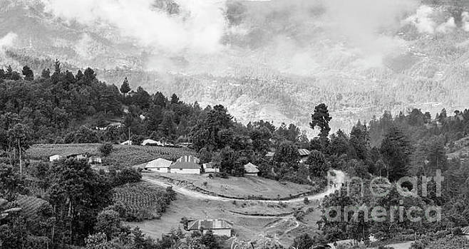 Guatemala Landscape Black And White by Tim Hester