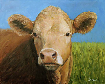 Guernsey Cow in Field with blue sky by Dottie Dracos