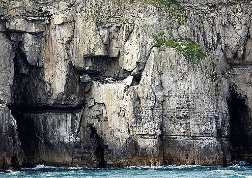 Guillemot Ledge by Mike Finding