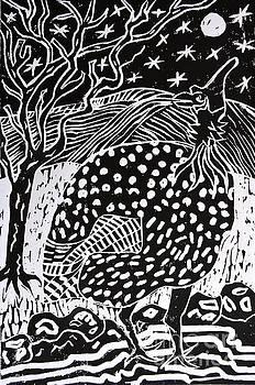 Caroline Street - Guinea Fowl Under the Stars
