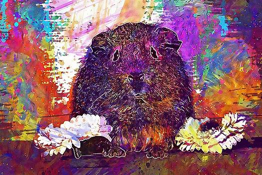 Guinea Pig Young Animal  by PixBreak Art