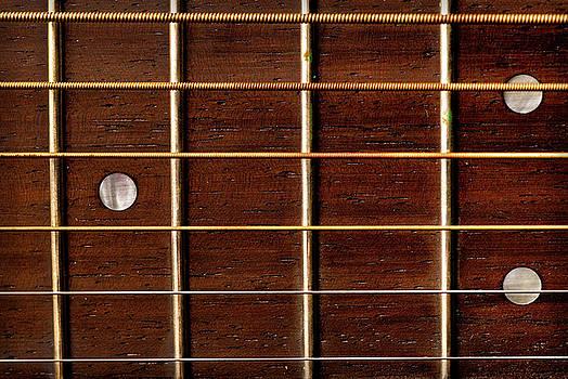 onyonet  photo studios - Guitar Fret Board