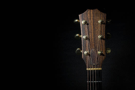 Guitar Headstock and Neck by Steve Shockley