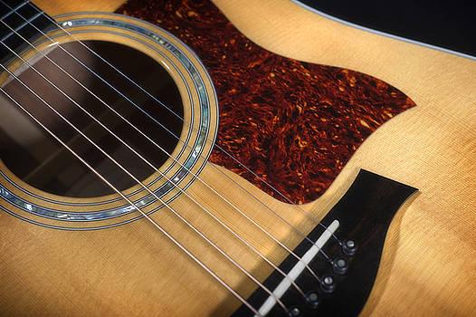 Guitar by Steve Shockley