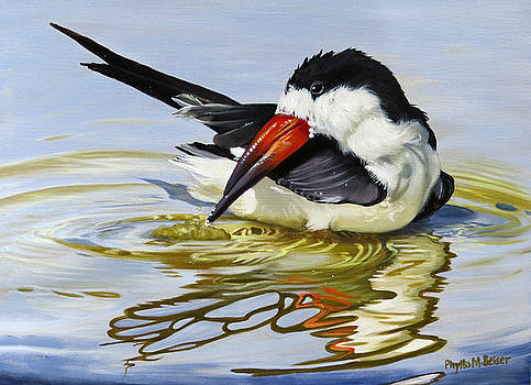 Gulf Coast Black Skimmer by Phyllis Beiser
