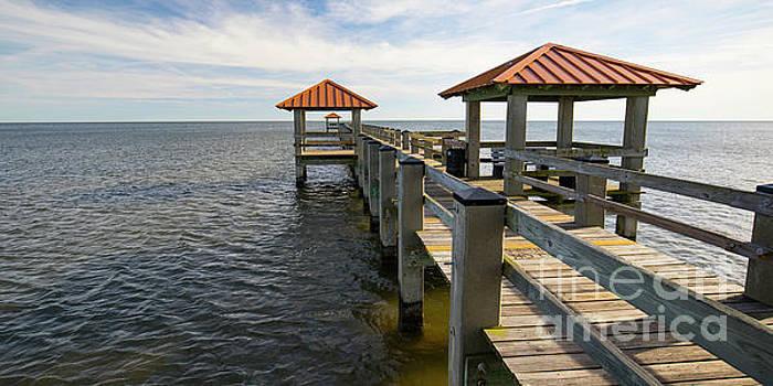 Gulf Coast Pier by Ron Sadlier