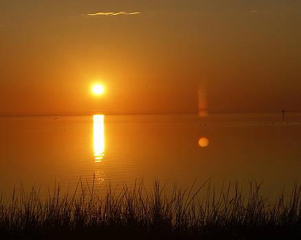 Marty Koch - Gulf Coast Sunset