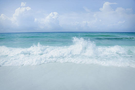 Gulf Coast by Tiffany Zumbrun