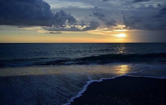 Patricia Twardzik - Gulf Waters Rolling In